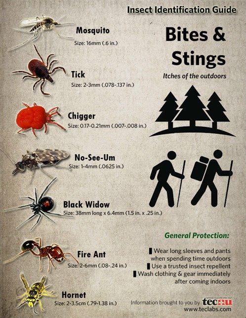ntegrated pest management manual for landscape pests in b.c pdf
