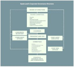 board of directors governance manual