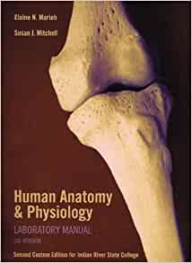 human anatomy and physiology lab manual cat version 9th edition