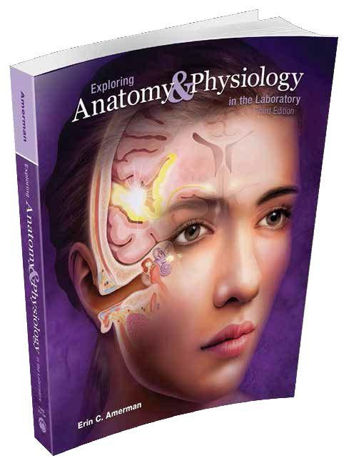 saladin anatomy and physiology lab manual 8th edition