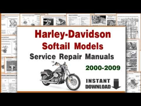 2002 harley davidson heritage softail service manual pdf