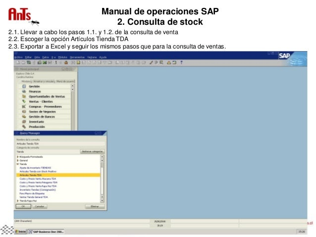 sap business one accounting manual