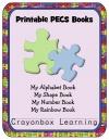 pragmatic language skills inventory manual