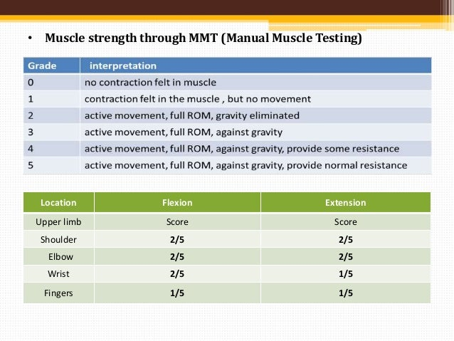manual muscle testing of back extension grades