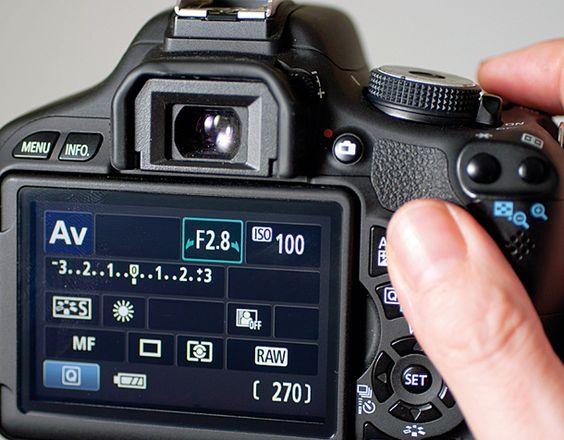 nikon digital manual exposure dandelion