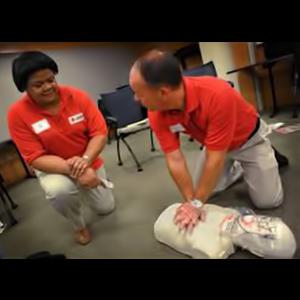 red cross lifeguard training manual online