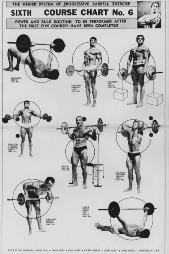 weider 2980 x weight system exercise manual