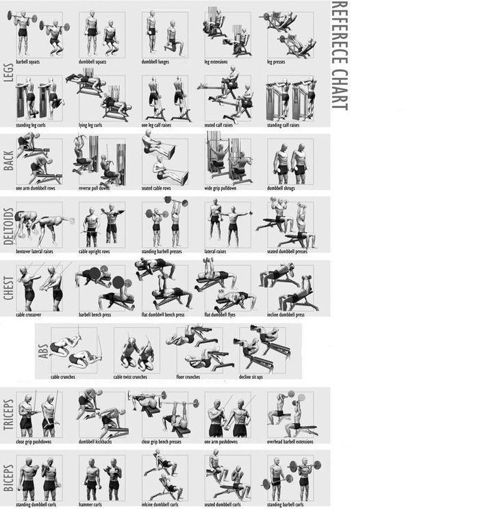 york fitness multi gym 4180 manual